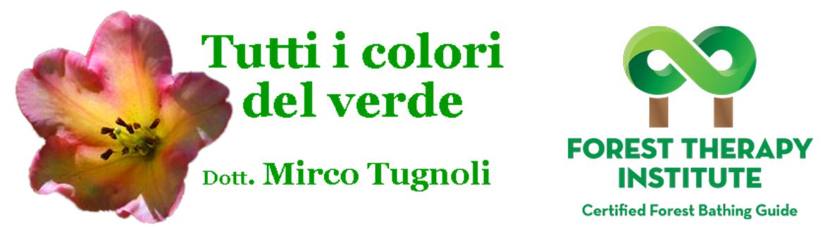 loghi_mirco_fti2