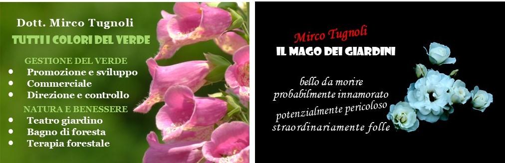 mircotugnoli_d_mod