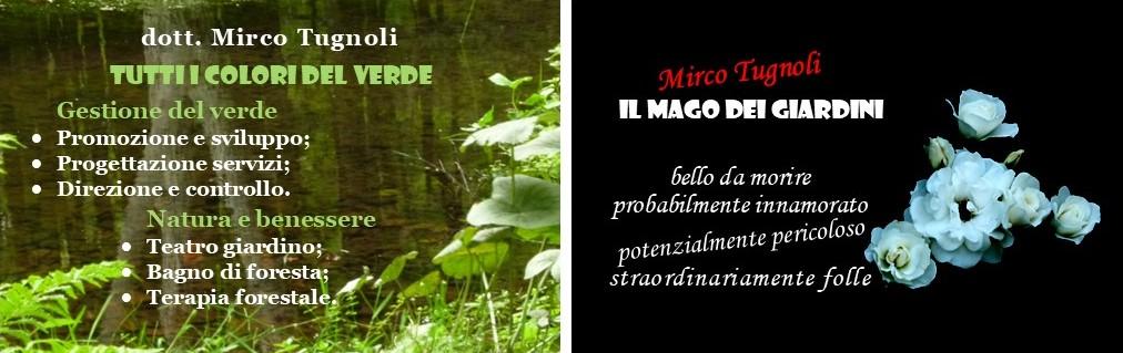 mircotugnoli_g