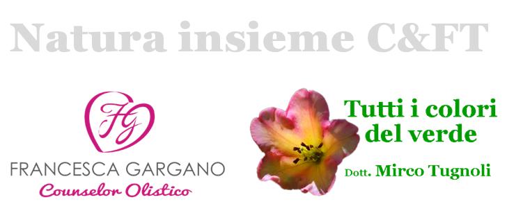 naturainsieme_logo2-pub