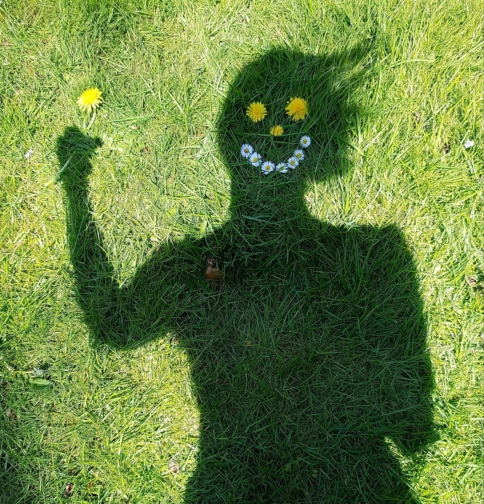smile-1374564_1920